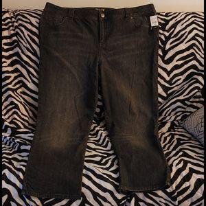 Nwt lane bryant venzia black jeans sizpet. pet(26)